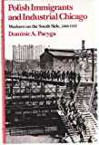 Polish Immigrants and Industrial Chicago : Workers on the South Side, 1880-1922, Pacyga, Dominic A., 0814205410
