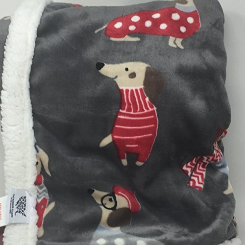 Humane Society Colorful Dogs in Scarves and Sweaters Reversible (to Dots) Pet Dog Blanket - Sherpa (Sherpa Dot Blanket)