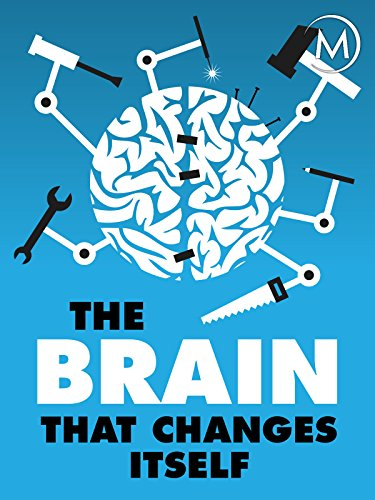 The Brain that Changes Itself (4 Parts Of The Brain And Their Functions)