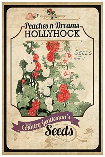 Marmont Hill Vintage-Farm Kitchen 'Flower Packet Geranium' Canvas Wall Art, 20