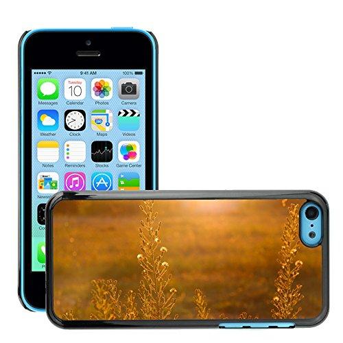 Stampato Modelli Hard plastica Custodie indietro Case Cover pelle protettiva Per // M00421627 Plantes Sunset Sun Rays de soleil // Apple iPhone 5C