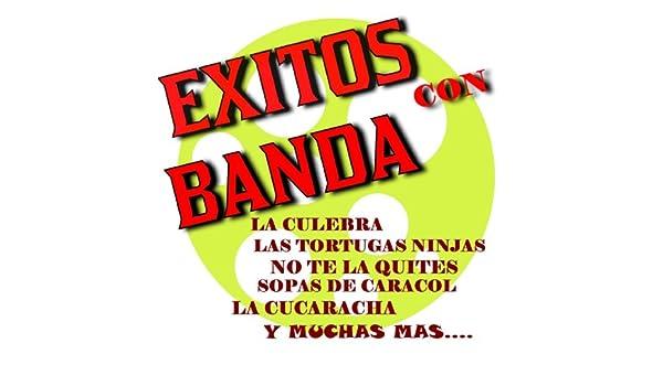 Las Tortugas Ninjas by Los Necios y Sonora Band on Amazon ...