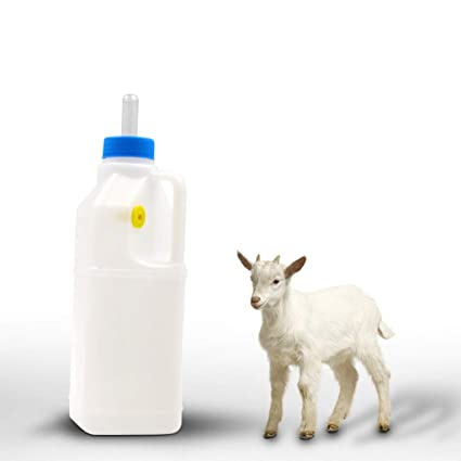Amazon.com: Botella de leche de cordero de 850 ml para ...