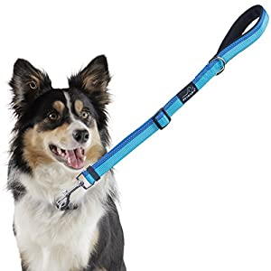 Short Dog Leash, PETBABA 1.5-2ft Long Adjustable Reflective Safe at Night Traffic Lead with Soft Padded Handle for Controlling Walking Training Your Pet in Blue