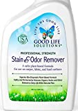 Stain Remover and Odor Eliminator - The Best Professional Strength Toddler, Dog and Cat Urine Cleaner - A Safer Plant-Based Enzyme Formula for Carpet, Fabric, Upholstery & Hard Floors (32)