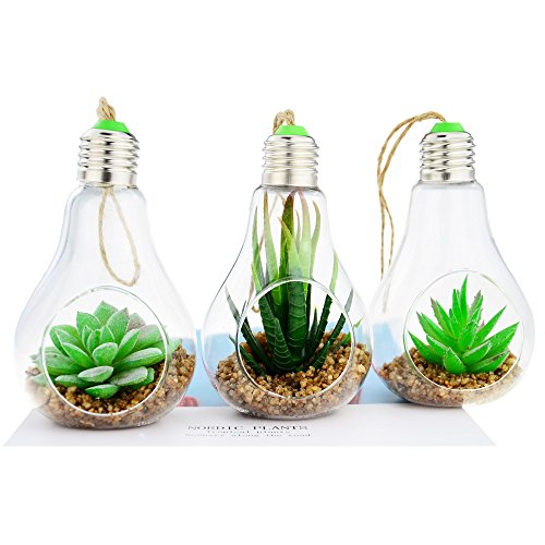 Shinejoy Hanging Succulents Artificial Plants Flowers Mini Faux Air Plant Pot Terrarium for Home Room Office Party Decoration (Group of 3)