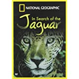 In Search Of The Jaguar