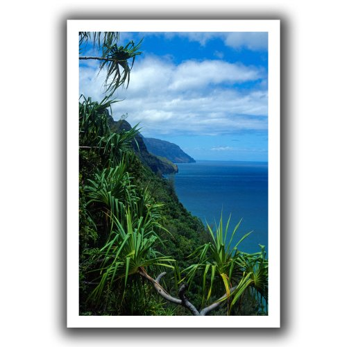 (ArtWall Kathy Yates 'Kalalau Trail Kauai' Unwrapped Canvas Artwork, 16 by 22-Inch)