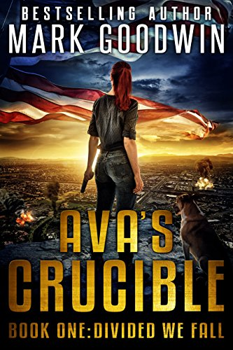 Divided We Fall: A Post-Apocalyptic Novel of America's Coming Civil War (Ava's Crucible Book 1) by [Goodwin, Mark]