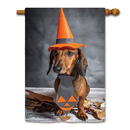 KafePross Dachshund Dog Dressed Funny Halloween on Wooden Table House Flag 28