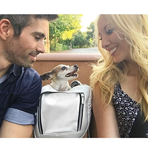 ZuGoPet Jetsetter Faux Leather Pet Carrier Handbag Purse Bag Dogs and Cats (Snow White) (Faux Leather Pet Carrier)
