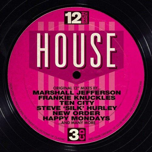 12Inch Dance-House / Various (House Music Cd)