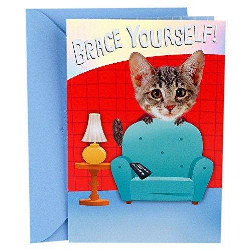 Hallmark Funny Father's Day Card (Flying Cat Hug Pop Up) -