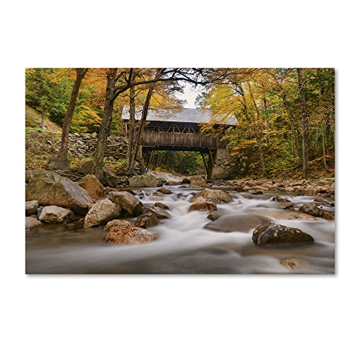 "picture of Trademark Fine Art ALI2377-C3""47GG ""The Flume Bridge"" by Michael Blanchet Photography Wall Decor, 3"""" x 47"""