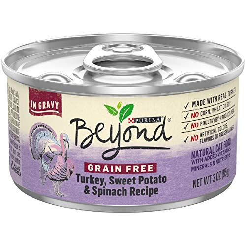 Purina Beyond Grain Free Gravy Wet Cat Food; Grain Free Turkey Recipe - 3 oz. Can, Pack of 12
