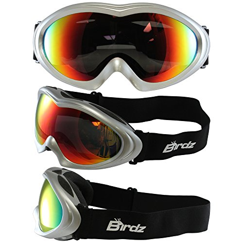 Birds Eyewear Icebird Ski Goggles with Silver Padded Frame Anti Fog Double Lens 100% UV Protection New