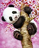 5D DIY Diamond Painting ,Diamond Painting by Number Kits for Adults Full Square Drill Rhinestone Embroidery for Wall Decoration(30X40CM/12X16inch),Cute Panda