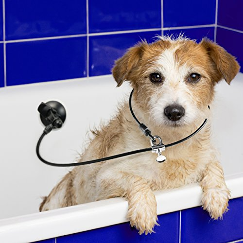 Last Leash Dog Bathing Tub Restraint - Tether Strap Keeps Dog in Bathtub - Upgraded Suction Cup for Any Surface by Last Leash