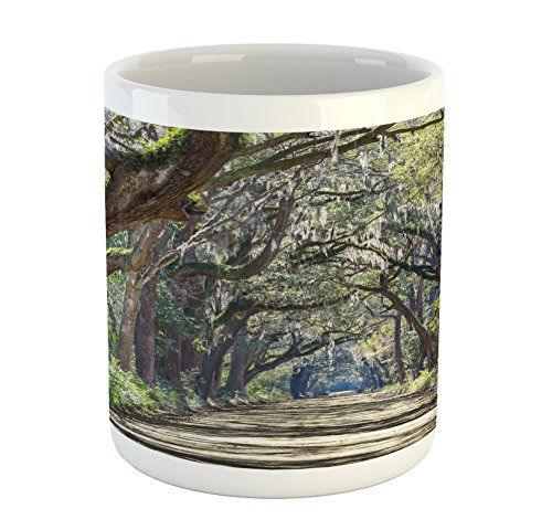 Ambesonne Nature Mug, Road in The Forest with Trees Botany South Carolina National Park Eco Picture, Printed Ceramic Coffee Mug Water Tea Drinks Cup, Fern Green Umber