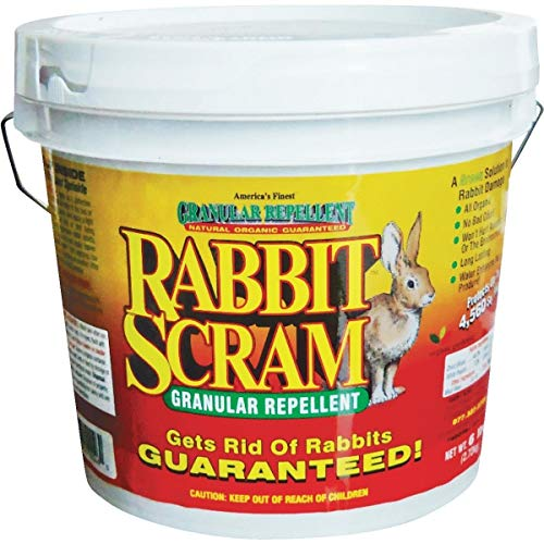 Rabbit Scram Repellent (Rabbit Scram Organic Rabbit Repellent - 11006 Pack of)