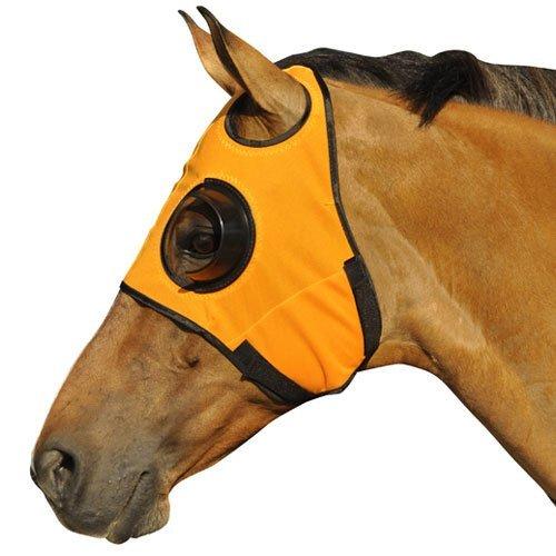 Intrepid International Can't See Back Quarter Cup Blinker Hood, Orange -