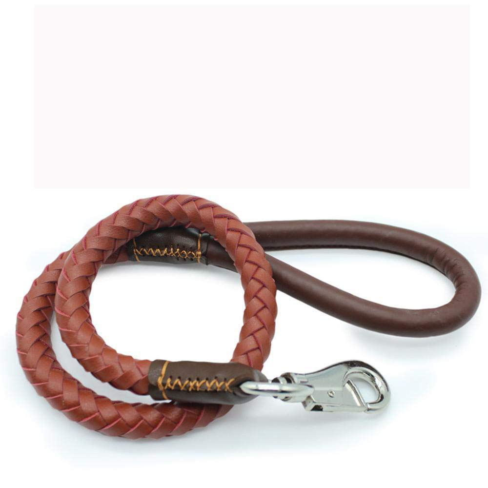 Hjyi Leather Pet Traction Rope Medium Dog Traction Belt