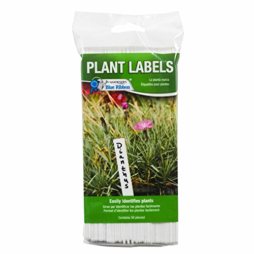 Gardener's Blue Ribbon T022B Plastic Plant Labels (50 Pack), 6