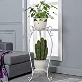 Echotang Metal 2-Tiered Plant Stand Decorative Garden Patio Standing Plant Flower Rack Flowepot Display Shelf (Color : White l)
