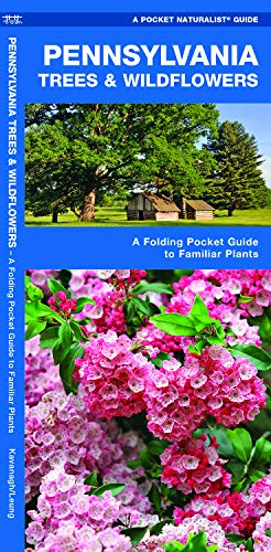 Pennsylvania Trees & Wildflowers: A Folding Pocket Guide to Familiar Plants (Wildlife and Nature Identification) (Best Pa Amplifier Brands)