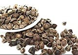100 Moringa Seed. The Best Quality