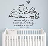 Winnie Pooh - As Soon As I Saw You Quote Baby Room Wall Decal- Decal For Baby's Room- Quote Mural Decal (Wide 22