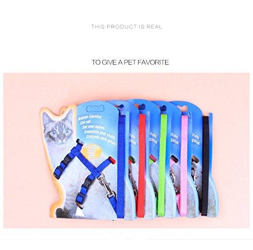[L&LH Pet Cat Lead Leash Halter Harness Kitten Nylon Strap Belt Safety Rope Adjustable Cat Dog Collar] (Loki Dog Costume For Sale)