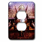 3dRose Alexis Photography - Transport Air - Stylized image of a modern fighter plane on the ground - Light Switch Covers - 2 plug outlet cover (lsp_267358_6)