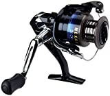 SHIMANO 5.2:1 Gear NEX2500FDC Nexave Fresh/Salt Water Spinning Reel