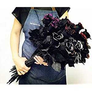 Angel Isabella 2 Dozens of Halloween Long Stem Artificial Roses with Glitters Red, Silver, Orange,Begonia Pink Perfect for Making Centerpiece,Wreath (Begonia Pink Glitter) 45