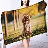 AmaPark Personalized Bath Towel A pet Dog on The Grass Moisture Wicking L39.4 x W19.7 INCH