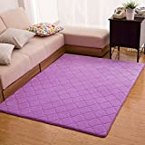 SU@DA Carpet Living room Bedroom Mats Door Bathroom Anti - skid Modern , purple , 50*80cm