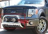 f150 bull bar chrome - APS BB-FAK009S Chrome Bull Bar Bolt Over for select Ford Expedition Models