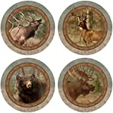 Thirstystone Stoneware Coaster Set, Wildlife Quartet