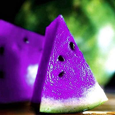 XKSIKjian's Garden 10Pcs Rare Variety Sweet Watermelon Seeds Fruit Ornamental Plant Home Yard Office Decor Non-GMO Seeds Open Pollinated Seeds for Planting - #5 Purple : Garden & Outdoor
