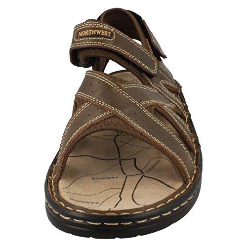 Mens Northwest Territory Sandals Sudan Brown KJ4gW5x