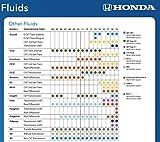 Honda Genuine HCF-2 Transmission Fluid Change