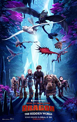newhorizon How to Train Your Dragon The Hidden World Movie Poster 17'' x 25'' NOT A DVD -