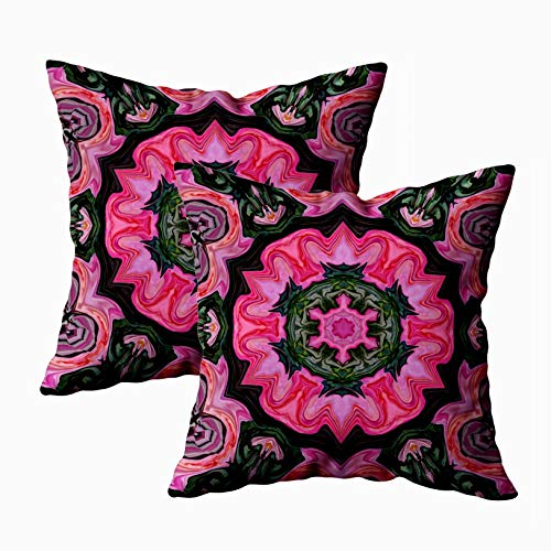 18x18 Pillow Cover,2 Packs Throw Pillow Covers,Douecilsh Cushion Soft Home Sofa Decorative Abstract Symmetrical Pattern Image Pink Roses Symmetrical Ornament in Natural Colors Double Printed -