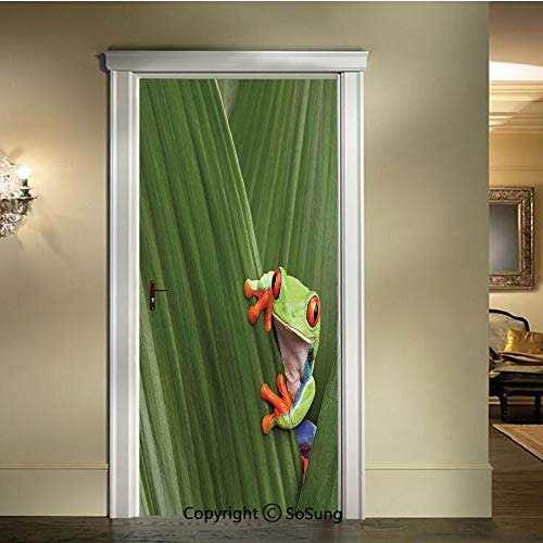 baihemiya 3D Door Wallpaper Stickers,Red Eyed Tree Frog Hiding in Exotic Macro Leaf in Costa Rica Rainforest Tropical Nature Photo,W30.3xL78.7inch,Suitable for Any Dry,Flat surfaceGreen