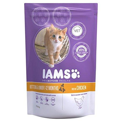 Iams Kitten y 700 g de pollo junior Pienso para gatos: Amazon.es ...