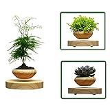 Magnetic Levitation Floating Pot, CHBC Magnetic Succulents Pot, Levitation Flower Pot for Bonsai / Herbs, Modern Simple Decorations for Your Office, Study Room, kitchen, Office Desktop Decor