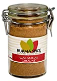 Ground Galangal in Glass Spice Preserve Bottle, 1.7oz