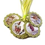 Peter Rabbit Favor Tags - Kid Boy Girl Baby Shower or Birthday Party Gift Tags - Set of 12