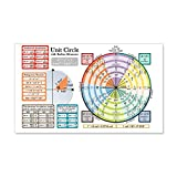 CafePress Unit Circle With Radians - 20x12 Wall Decal, Vinyl Wall Peel, Reusable Wall Cling
